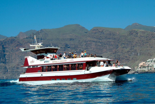 dolphin glass bottom boat puerto colon adeje tenerife